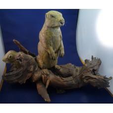 George Johnston wood carving