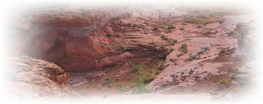 we guide Arizona
