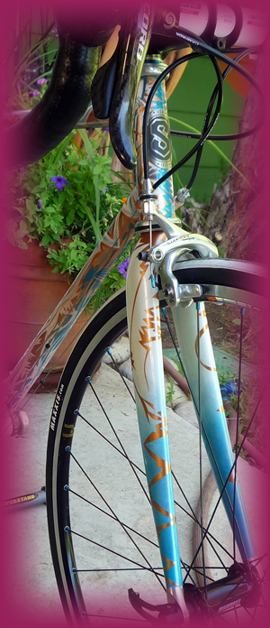 Custom Paint and Build on Serotta frame and fork by Lee Bridgers