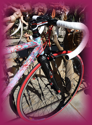 Dreamride custom paint for Moots