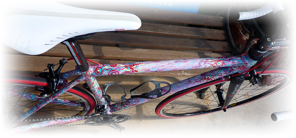 custom paint on a Dreamride Moots CR road bicycle